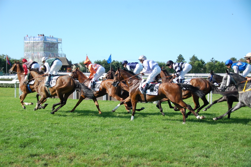 Wednesday Leopardstown Racing Tips by Dave Stevos