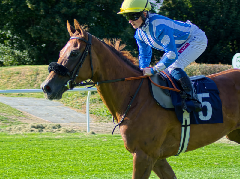 Saturday live ITV Tips and Preview by Dave Stevos