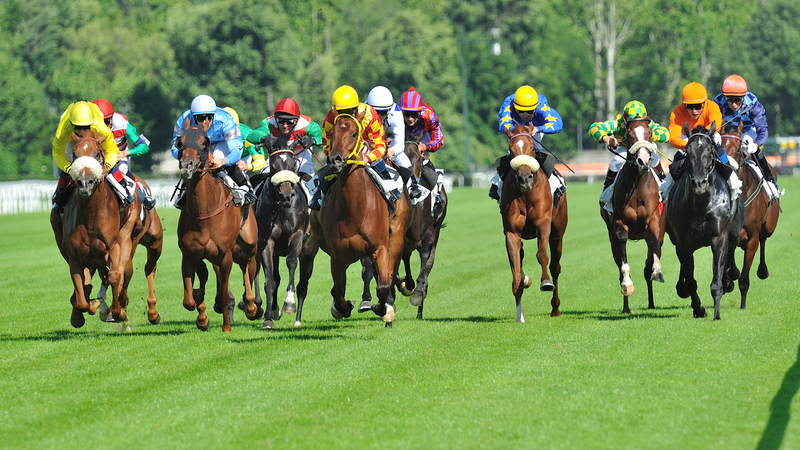 Friday Live ITV Tips From Newmarket by Dave Stevos