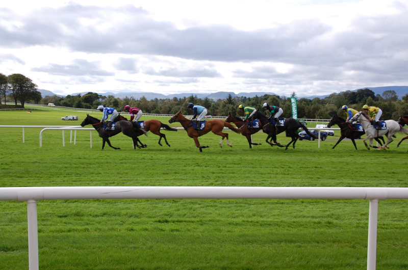 Ayr and Newbury Saturday Tips by Dave Stevos