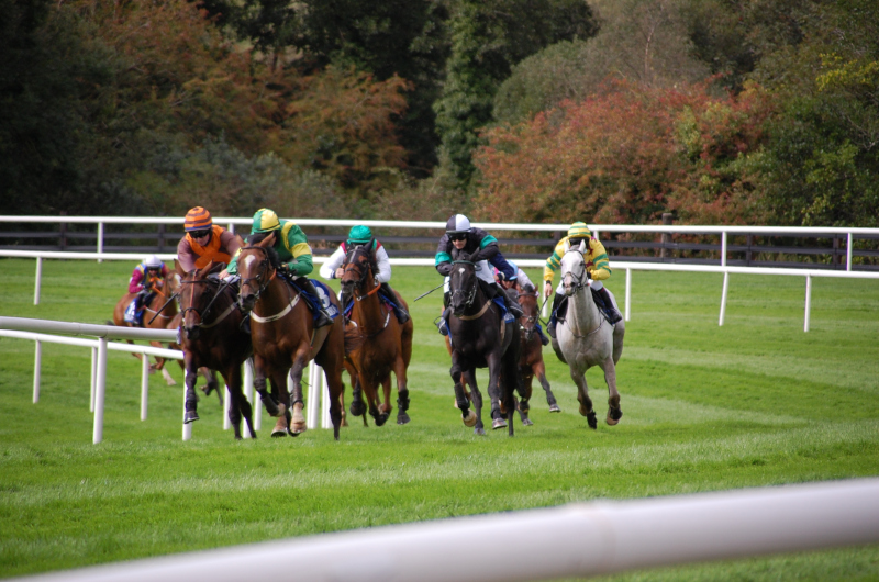 Newmarket and Pontefract Thursday Tips by Dave Stevos